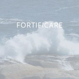 Fortificare